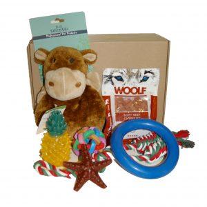 DoxieBox Monkey